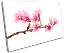 Cherry Blossoms Floral - 13-1138(00B)-SG32-LO